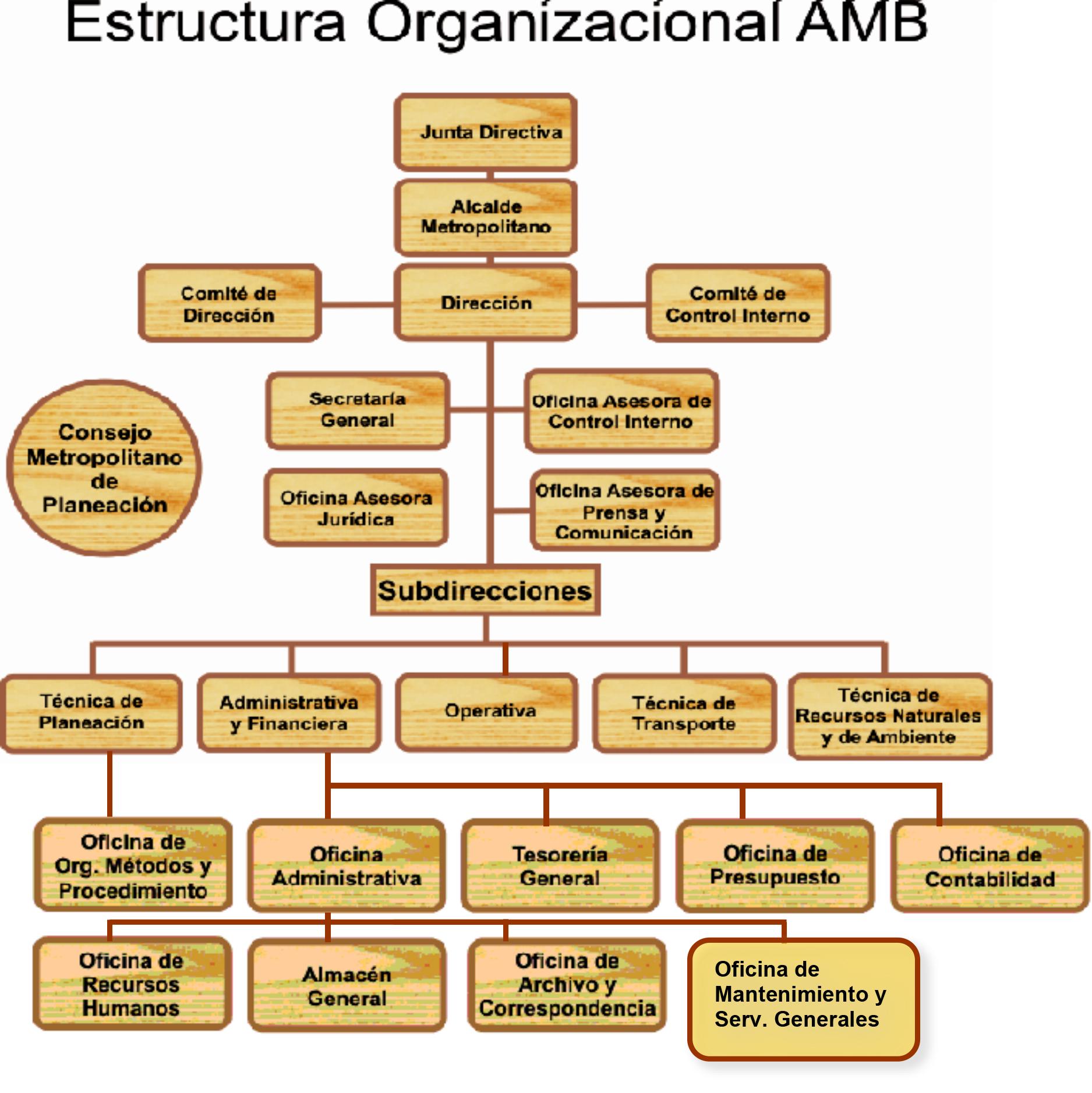 Estructura Organizacional AMB